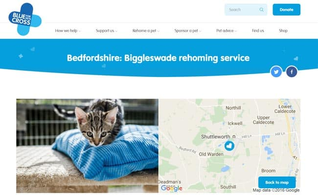 Blue Cross Rehoming Service, Old Warden