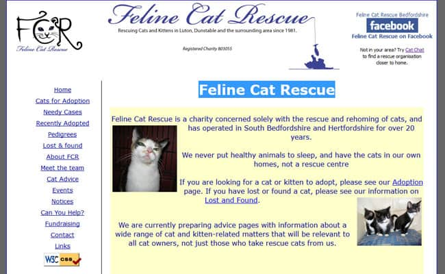 Feline Cat Rescue, Luton