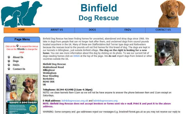 Binfield Dog Rescue, Wokingham - Pet Rescue and Animal Welfare