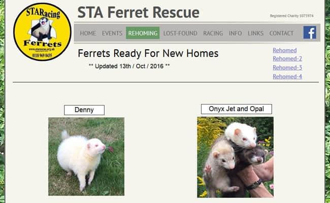 STA Ferret Rescue, Reading