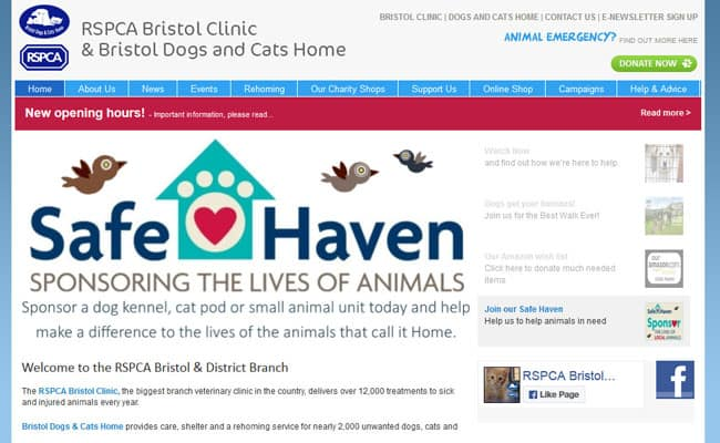 Bristol Dogs and Cats Home, Bristol