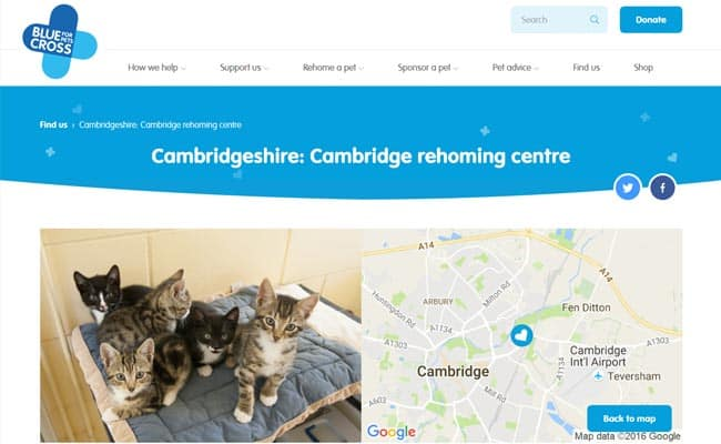 Blue Cross Rehoming Centre, Cambridge