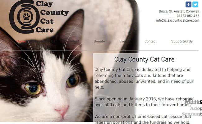 Clay County Cat Care, St. Austell