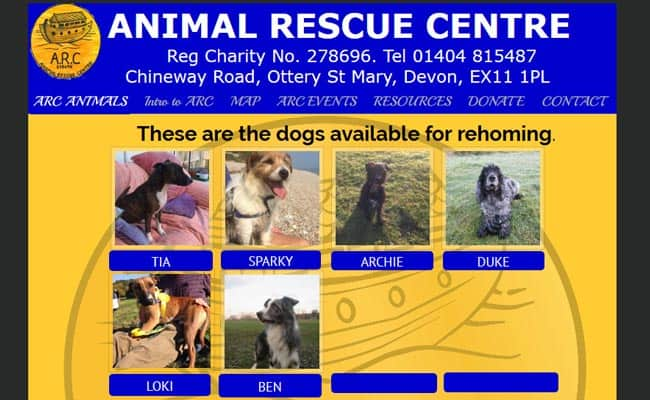 A R C Animal Rescue Centre, Ottery St. Mary