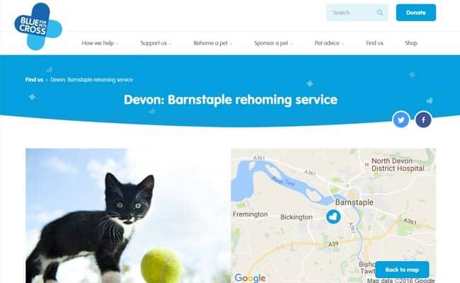 Blue Cross Rehoming Service, Barnstaple