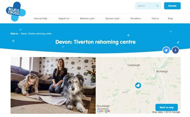 Blue Cross Rehoming Centre, Tiverton