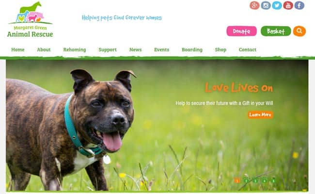 Dog rescue centre upminster