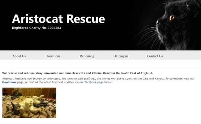 Aristocat Rescue, Newton Aycliffe
