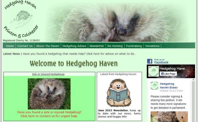 Hedgehog Haven Rescue, Frinton-On-Sea