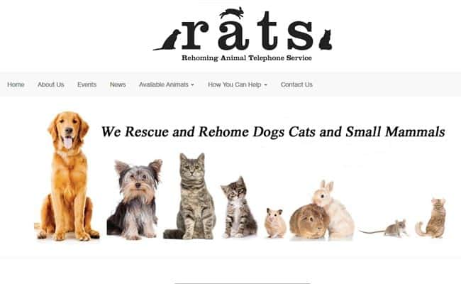 Rehoming Animal Telephone Service