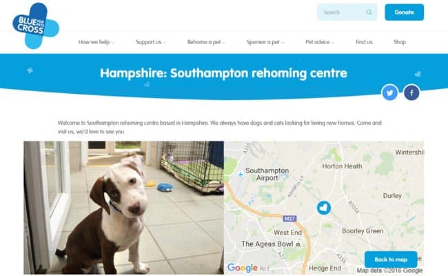 Blue Cross Rehoming Centre, Southampton