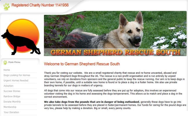 German Shepherd Rescue South, Fareham