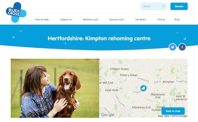 Blue Cross Rehoming Centre, Kimpton Bottom