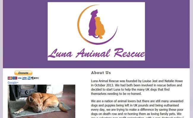 Luna Animal Rescue, Royston