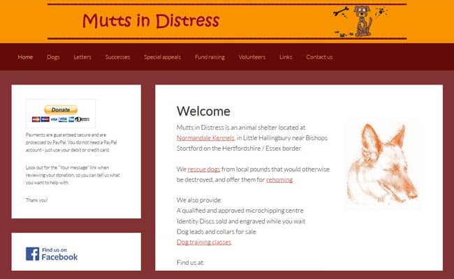 Mutts in Distress, Bishops Stortford