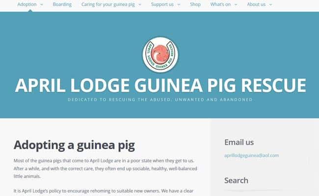 April Lodge Guinea Pig Rescue, Sandwich