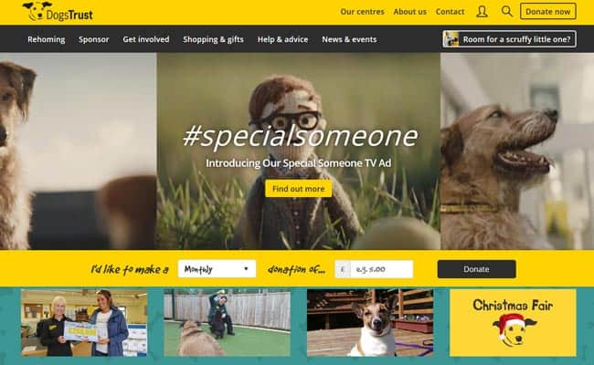 Dogs Trust Rehoming Centre, Canterbury
