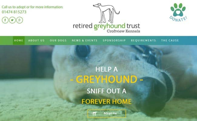 Retired Greyhound Trust, Meopham