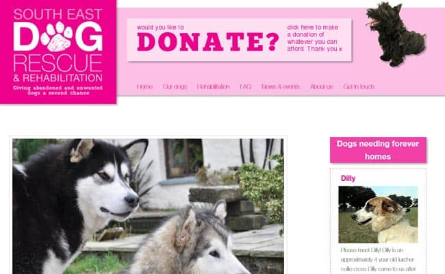 South East Dog Rescue, Ashford