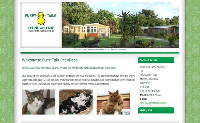 Furry Tails Feline Welfare, Blackpool