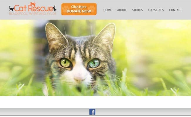 Cat Rescue Blackpool and Fylde, Lytham St. Annes
