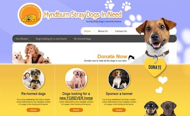 Hyndburn Straydogs in Need, Accrington
