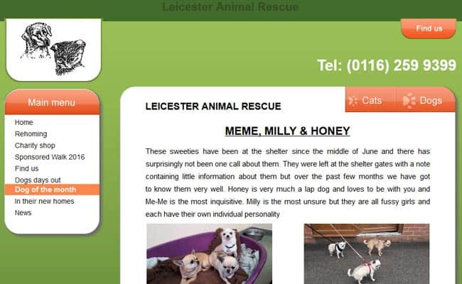 Leicester Animal Rescue, Billesdon