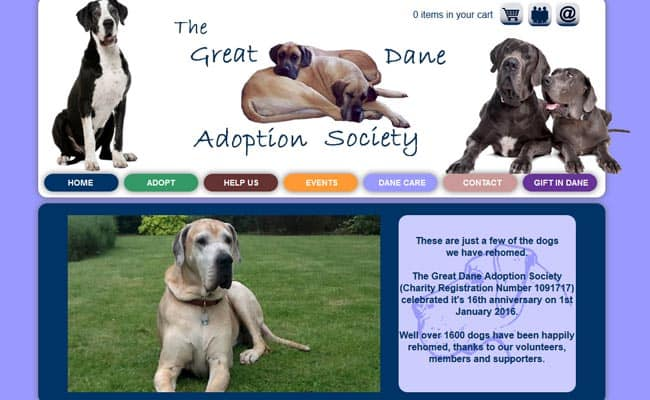 Great Dane Adoption Society, Boston