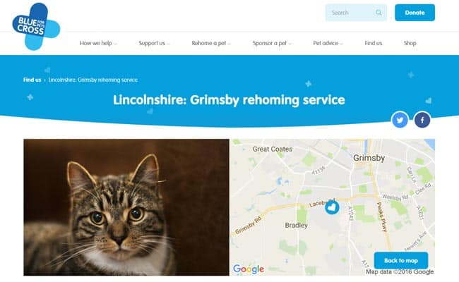 Blue Cross Rehoming Service, Grimsby