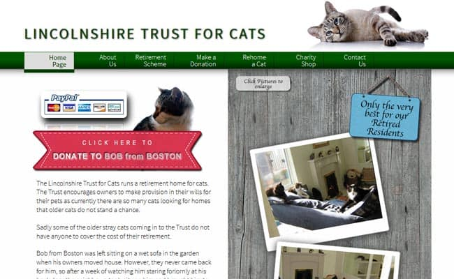 The Lincolnshire Trust for Cats, Market Rasen