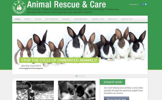 Animal Rescue and Care, Richmond upon Thames