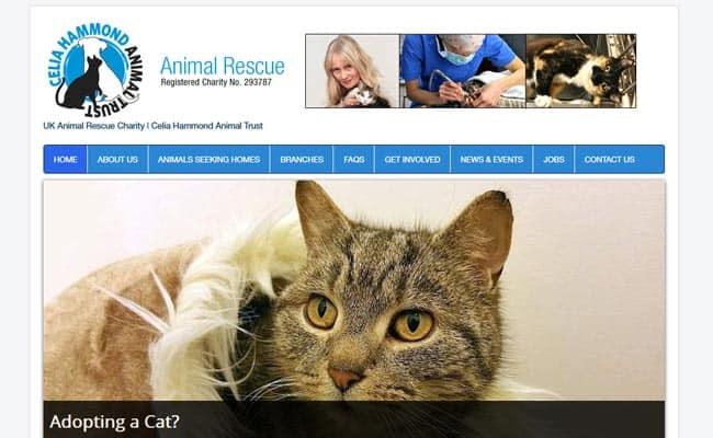 Celia Hammond Animal Trust, Lewisham