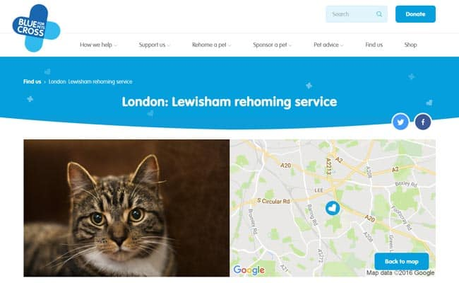 Blue Cross Rehoming Service, Lewisham