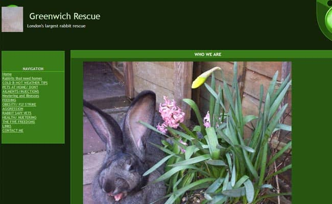 Greenwich Rabbit Rescue, London