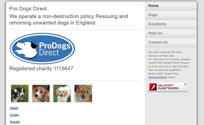 Pro Dogs - Direct Re-Homing, Aylesford