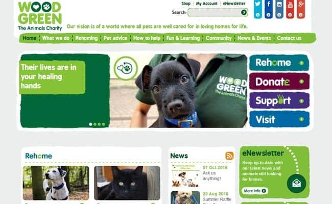 Wood Green Animal Shelter, London