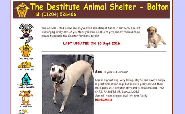 Destitute Animal Shelter, Bolton