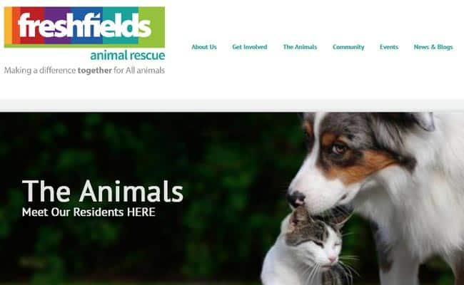 Freshfields Animal Rescue Centre, Liverpool