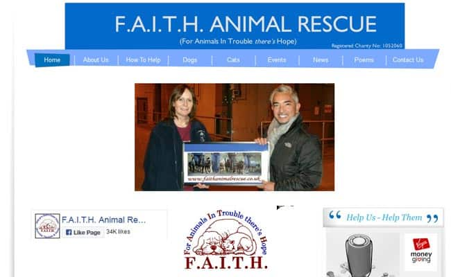 FAITH Animal Rescue, Norwich