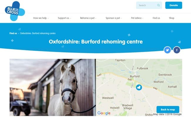 Blue Cross Rehoming Service, Burford
