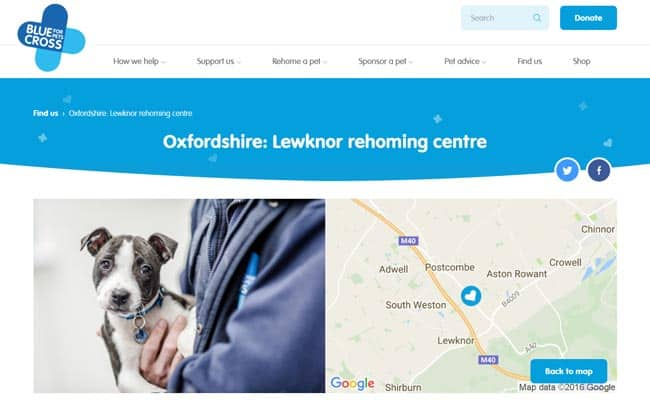 Blue Cross Rehoming Service, Lewknor