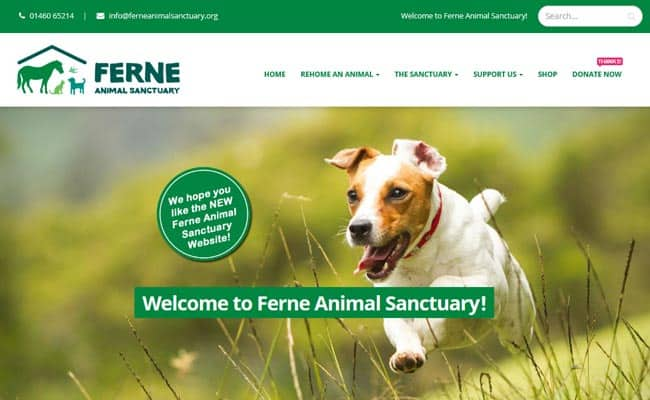 Ferne Animal Sanctuary, Chard