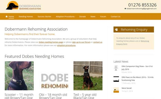 Doberman Rehoming Association, Guildford