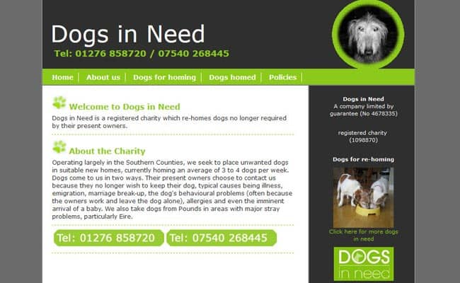 Dogs In Need, Chobham