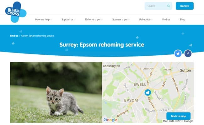 Blue Cross Epsom Rehoming Service, Ewell