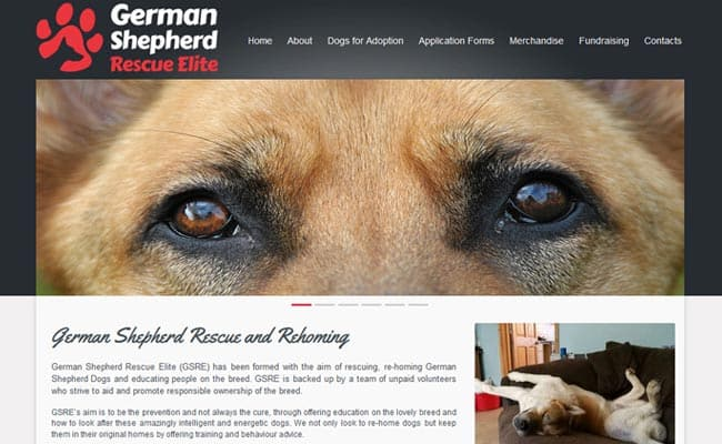 German Shepherd Rescue Elite, Guildford