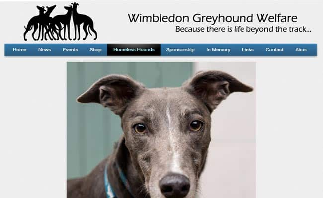 Wimbledon Greyhound Welfare, Hersham