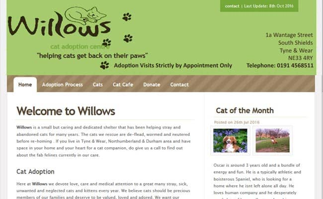 Willows Cat Adoption Centre, South Shields