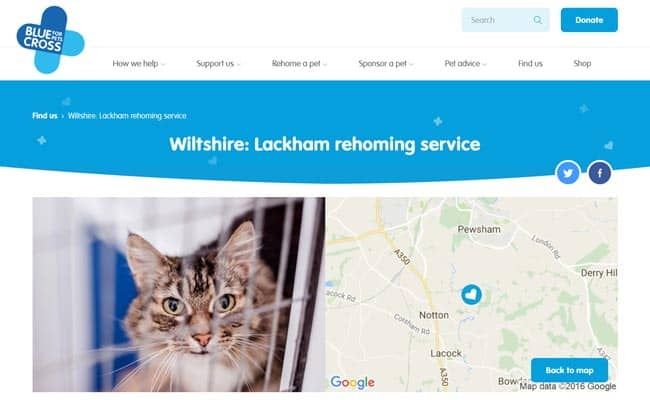Blue Cross Rehoming Service, Chippenham