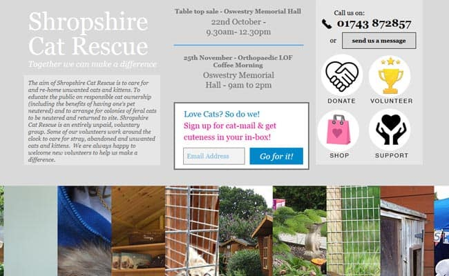 Shropshire Cat Rescue, Shrewsbury